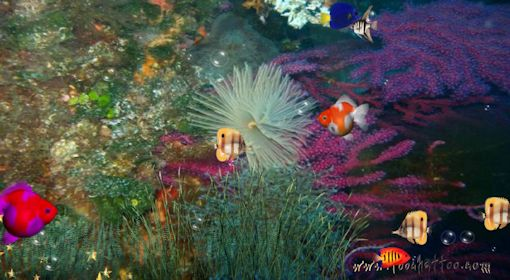 Scenery wallpaper un fond d 39 cran anim gratuit for Fond ecran aquarium